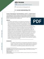 Patofisiología de La Pre-eclampsia