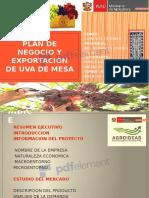 282951655-PLAN-DE-NEGOCIO-Y-EXPORTACION-UVA-DE-MESA-pptx-Copiar.pdf