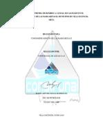 Informe Prueba de Bombeo Caudal Escalonado Rincon Margaritas 2 2019 (1)
