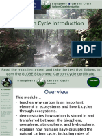 Carbon Cycle Introduction.pptx