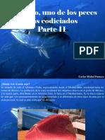Carlos Michel Fumero - Atún Rojo, Uno de Los Peces Más Codiciados, Parte II