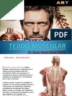 Sistema Muscular CLASE 9