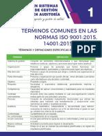 Terminos comunes normas ISO 9001:2015