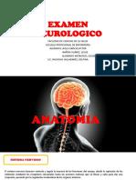 Neurologic o