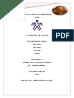 Informe Arequipe LUIS
