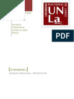Problemáticas Actuales en Salud Mental (2).docx