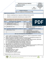 Protocolo PCR