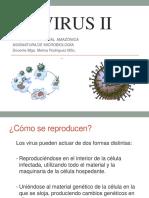 VIRUS_Bacteriófagos y Virus Animales