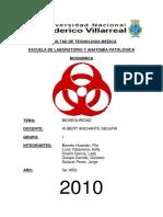 102415754-Bioseguridad-en-El-Laboratorio.docx