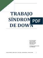 SindromeDown.pdf