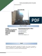 01_HOJA_VIDA_PACHECO_DAVID.docx