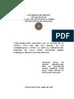Tesis- Caracterización Geológica de Un Sector de La Cuenca Alta Del Río San Miguel