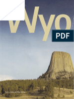 Wyoming, De Los Búfalos a Bush