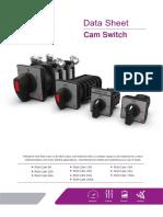 Cam switches