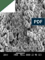 SEM image of fly ash based geopolymer