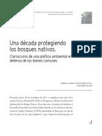 Schmidt, Mariana. Una Década Protegiendo Los Bosques Nativos.
