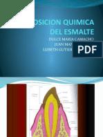 Composicion Quimica Del Esmalte