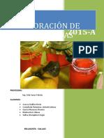 Elaboración de néctar de frutas