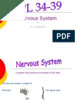 HPL 34-38 Nervous System