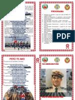 Fiestas Patrias Programa