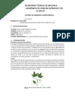 Guias Practicas Botanica 2019-d1 III Semestre p V