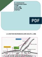 Partie I - Différenciation Musculaire - Myogenèse - Chap 5