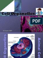 Cell Organelles3Teacher