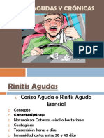 258613688 Rinitis Agudas y Cronicas