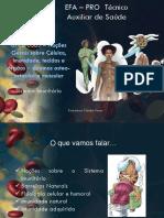 UFCD6565_ManualImunidadepdf