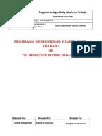 PROGRAMA_DE_SALUD_Y_SEGURIDAD_EN_EL_TRABAJO_TSV[1].pdf