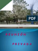 MEDIACIÓN-continuación Proceso-privada-fin de Proceso-co y Pre Med