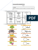 Evaluacion diagnóstica.docx