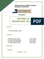 171797146-informe-de-respiracion-celular-150521003837-lva1-app6892.pdf