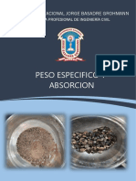 Peso Especifico y Absorcion
