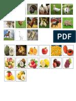 Animales y Frutasss