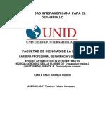 avance de esquema I-II.docx
