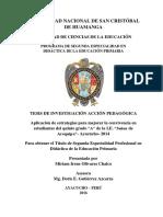 TESIS DE INVESTIGACIÓN ACCIÓN PEDAGÓGICA