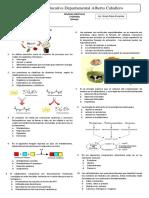 preguntas tipo ICFES Biología 7°