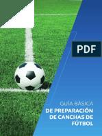 guia-basica-preparacion-canchas-conmebol-2019-esp.pdf