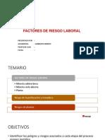 08_Factores de Riesgo Laboral inacap