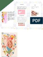 Triptico Del Embarazo