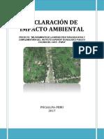 DECLARACIÓN-DE-IMPACTO-AMBIENTAL_AVANCE_2_IST_CACU_REALdocx