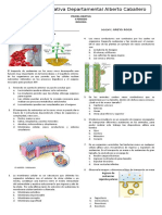 7º Prueba Objetiva Biología 2do Periodo