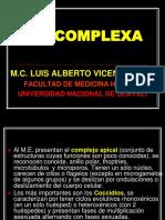 APICOMPLEXA.ppt
