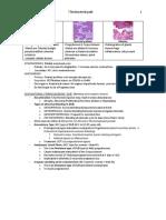 7 FGS - Endometrium