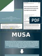 Criterios-musa