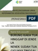 Bahan Paparan Perkesmas Lebak.pptx