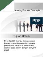 Nursing Proces