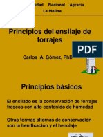 2. PRINCIPIOS DEL ENSILAJE DE FORRAJES (1).pptx