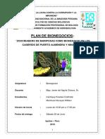 PLAN de BIONEGOCIOS Cachique y Manihuari